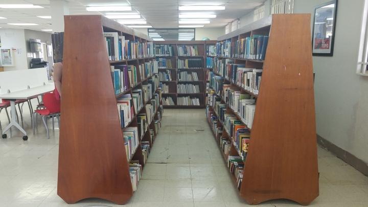 bibliotecarolina4